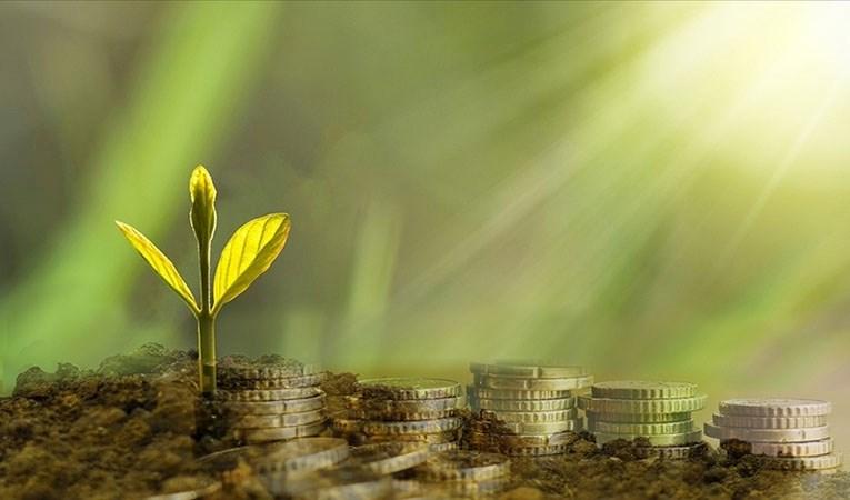 Yeşil dönüşüm projesi olan genç girişimcilere, 200 bin liralık hibe desteği