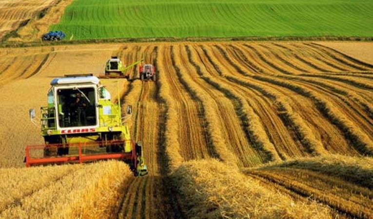 Cargill'den 1000 Çiftçi 1000 Bereket programı