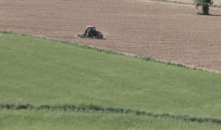 Hazineye ait tarım arazileri çiftçilere kiralanacak